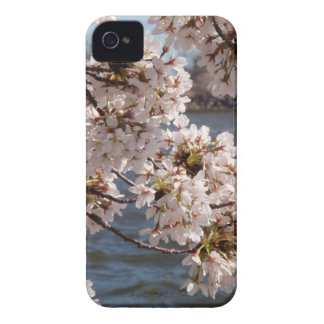 Cherry Blossom over the Potomac (iPod 4/4s case) iPhone 4 Case
