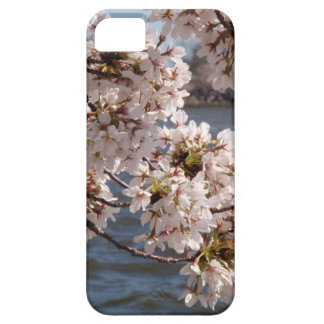 Cherry Blossom over the Potomac (iPod 4 case) Case For The iPhone 5