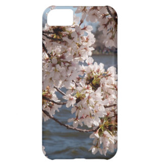 Cherry Blossom over the Potomac (iPod 4 case) iPhone 5C Case