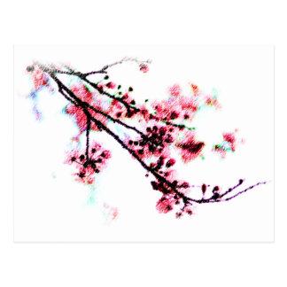 Cherry Blossom Painting Postcard