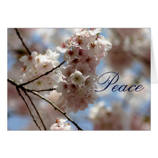 Cherry blossom peace at Easter greeting Greeting Card