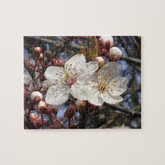 Cherry Blossom Puzzle
