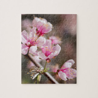 Cherry blossom puzzle for a single or couple