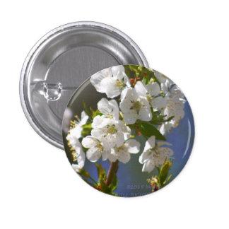 Cherry Blossom Season 1 Inch Round Button
