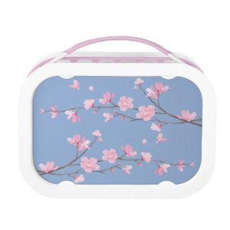 Cherry Blossom - Serenity Blue Lunch Box