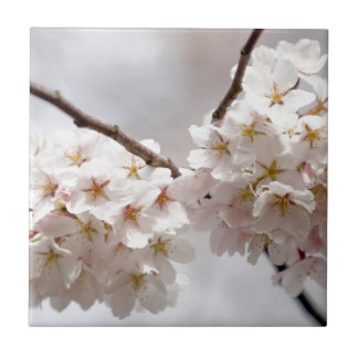 Cherry Blossom Small Square Tile