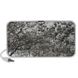 Cherry Blossom iPhone Speakers