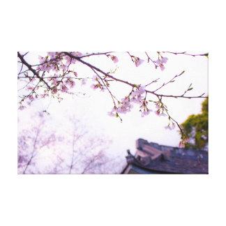Cherry Blossom  | Temple | Yoga Canvas Print