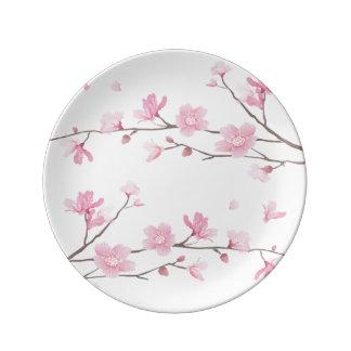 Cherry Blossom - Transparent Background Plate
