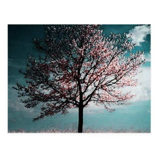Cherry Blossom Tree Painting - Dusk Postcard