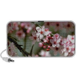 Cherry Blossom Tree iPod Speakers