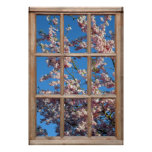 Cherry Blossom View from a Window Poster