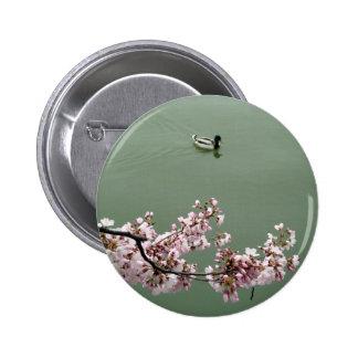 Cherry Blossom Washington DC 6 Cm Round Badge
