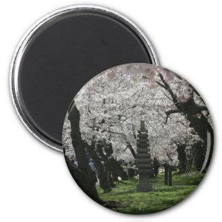 Cherry Blossom Washington DC Fridge Magnet