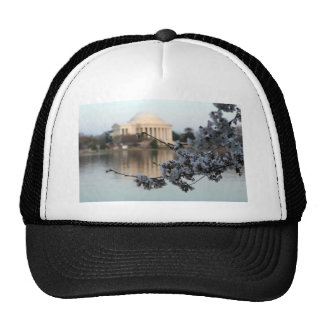 Cherry Blossom Washington DC Hats