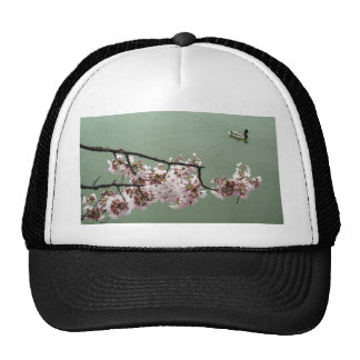 Cherry Blossom Washington DC Mesh Hat