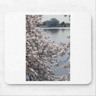 Cherry Blossom Washington DC Mouse Pad