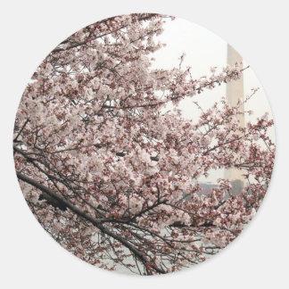 Cherry Blossom Washington DC Round Sticker