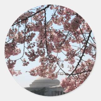 Cherry Blossom Washington DC Round Stickers