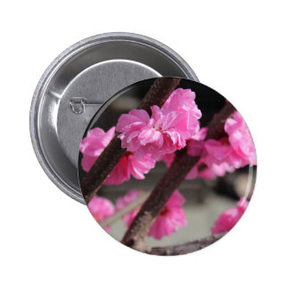 Cherry Blossoms 6 Cm Round Badge