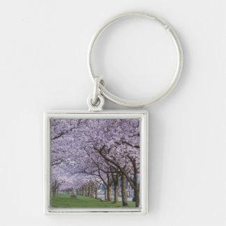 Cherry blossoms along Willamette river, USA Silver-Colored Square Key Ring