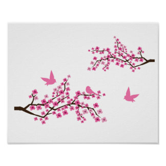 Cherry Blossoms and Birds Poster