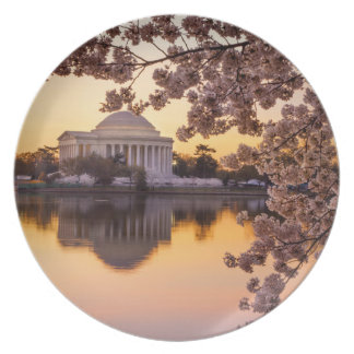 Cherry Blossoms And The Jefferson Memorial Plate