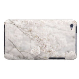 cherry blossoms barely there iPod covers