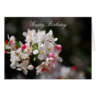 Cherry blossoms birthday card
