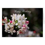 Cherry blossoms birthday greeting card