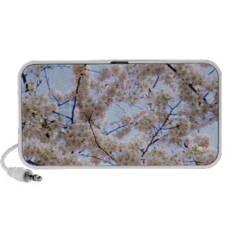 'Cherry Blossoms' Doodle Speaker
