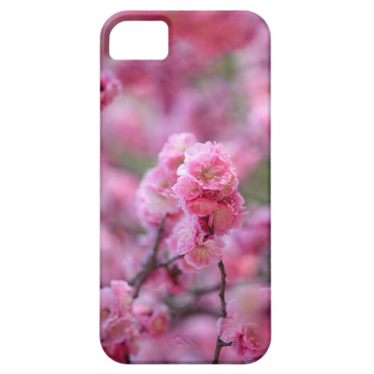 Cherry Blossoms Flower iPhone 5 Cover