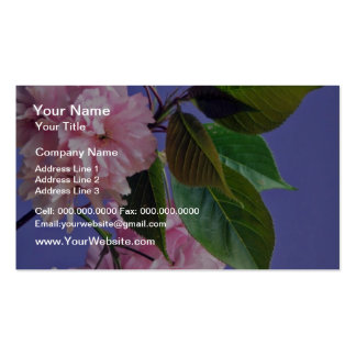 Cherry blossoms  flowers pack of standard business cards