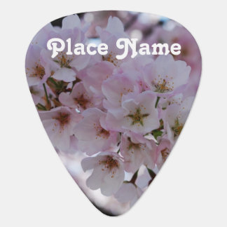 Cherry Blossoms Guitar Pick