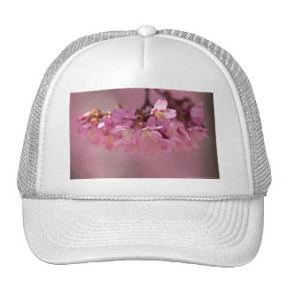 Cherry Blossoms Hot Spring  2012 Apparel  & Gifts Mesh Hats