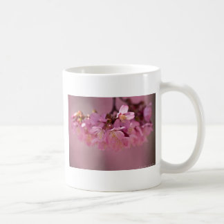 Cherry Blossoms Hot Spring  2012 Apparel  & Gifts Mug