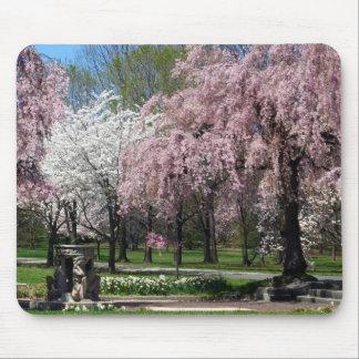 Cherry Blossoms in Philadelphia Mousepad