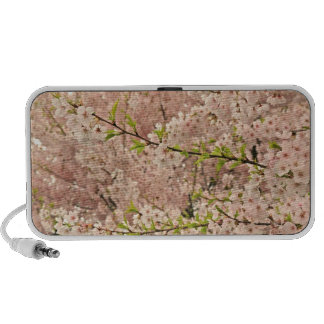 Cherry Blossoms in Spring Laptop Speakers