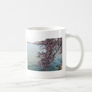 Cherry Blossoms in Washington DC Mug