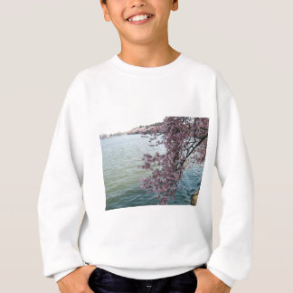 Cherry Blossoms in Washington DC Sweatshirt