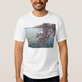 Cherry Blossoms in Washington DC Tees