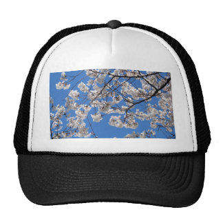 Cherry Blossoms in Washington DC Trucker Hats