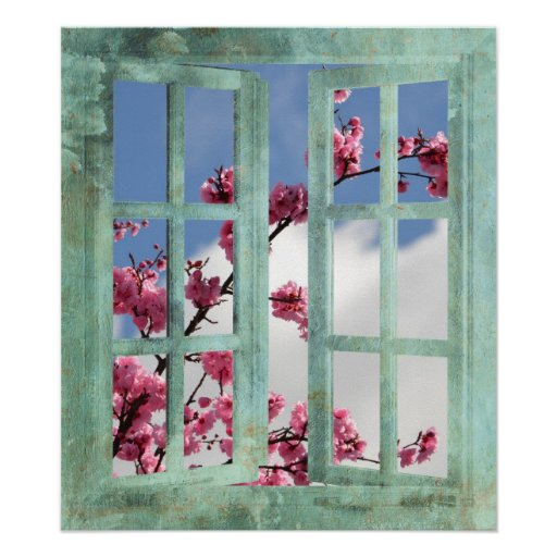 Cherry Blossoms in Window Poster