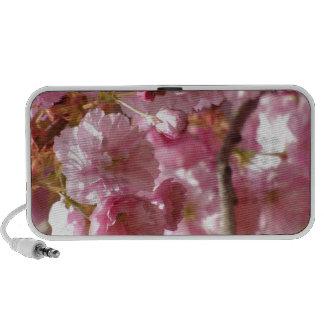 Cherry Blossoms iPhone Speaker