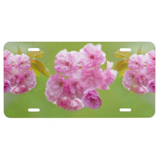 Cherry Blossoms License Plate
