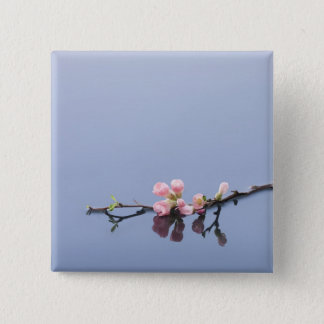 Cherry blossoms on water 15 cm square badge