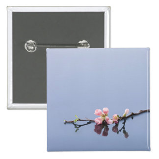 Cherry blossoms on water pinback buttons