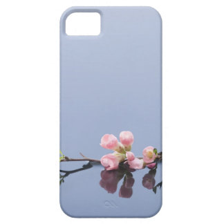 Cherry blossoms on water iPhone 5 cases