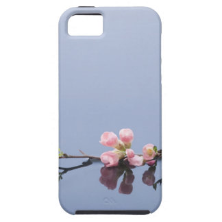 Cherry blossoms on water iPhone 5 cover