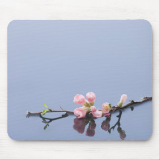 Cherry blossoms on water mouse pad